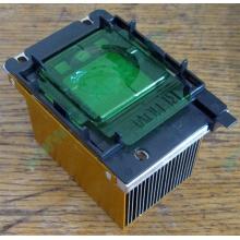 Радиатор HP p/n 279680-001 (socket 603/604) - Прокопьевск