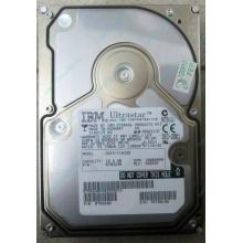 Жесткий диск 18.2Gb IBM Ultrastar DDYS-T18350 Ultra3 SCSI (Прокопьевск)